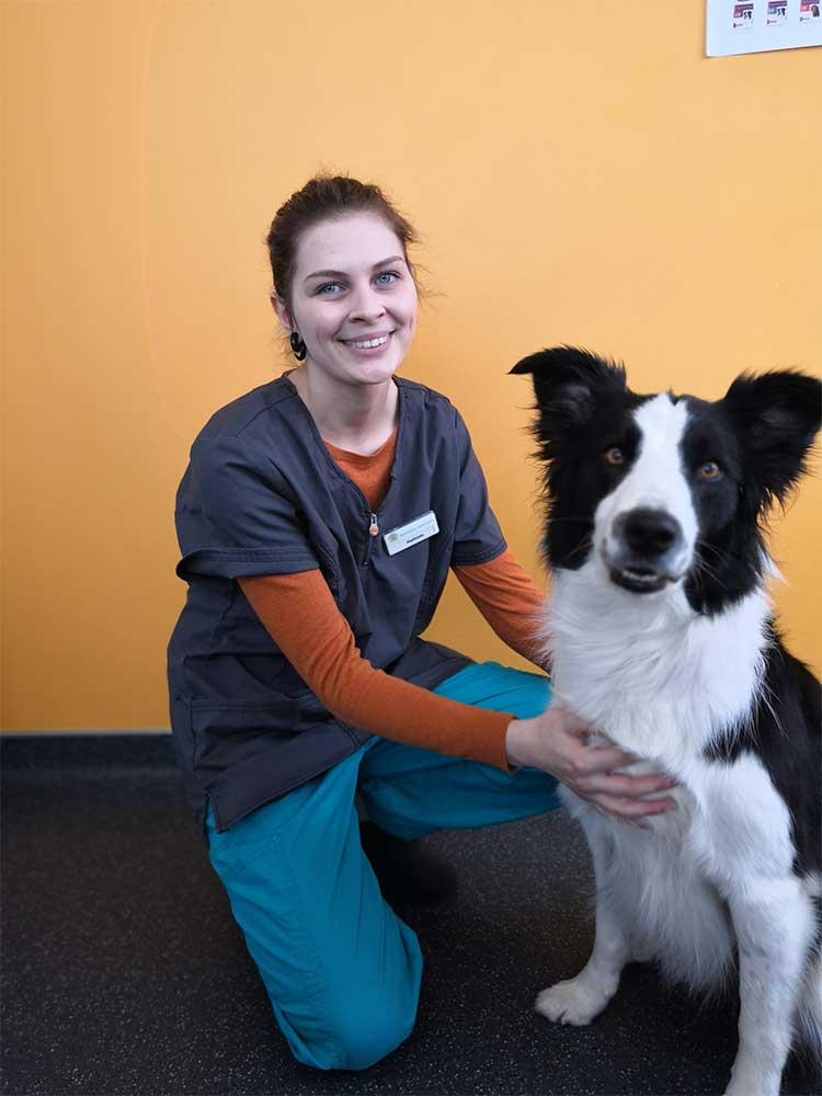 clinique vétérinaire chasse sur rhone docteur chien chat nac medecin ternay cabinet communay givors